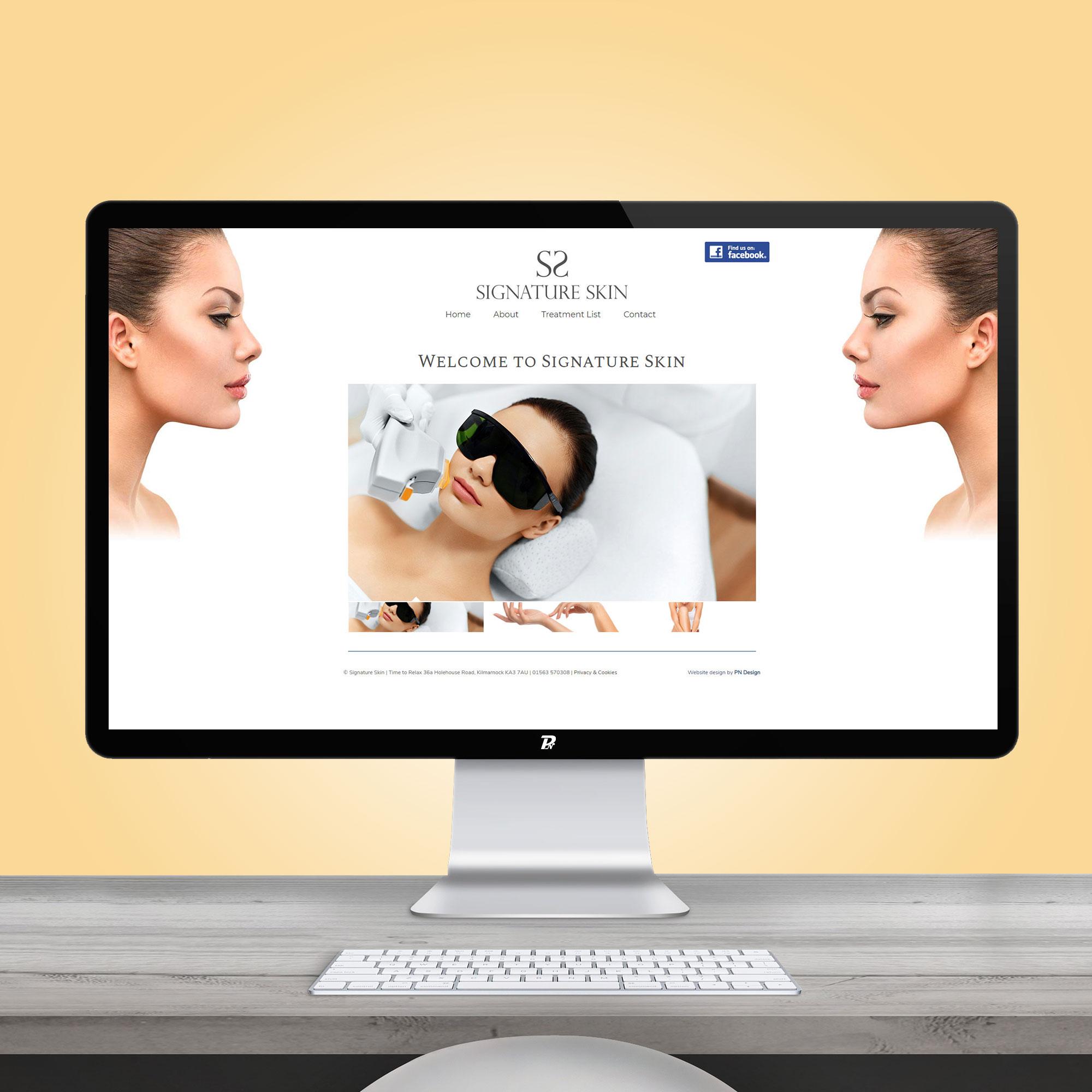 Website Design Signature Skin